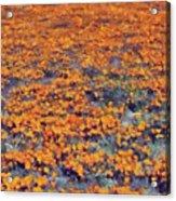 Flower Hill Acrylic Print