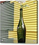 Flower In A Bottle Acrylic Print