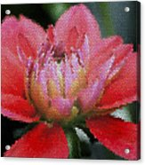 Flower In Stain Glass Acrylic Print