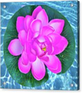 Flower In The Pool Acrylic Print