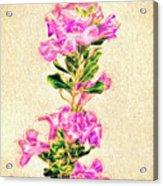 Flower-j Acrylic Print