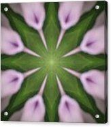 Flower Kaleidoscope_003 Acrylic Print
