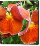 Flower Lips Acrylic Print