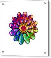 Flower Mandala 6 Acrylic Print