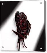 Flower No.1 Acrylic Print
