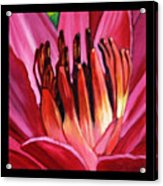 Flower Number One Acrylic Print