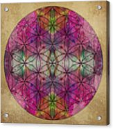 Flower Of Life Acrylic Print by Filippo B