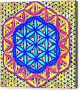 Flower Of Life Fractle Acrylic Print
