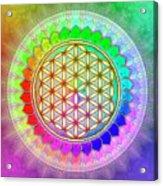 Flower Of Live - Rainbow Lotus 2 Acrylic Print
