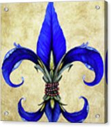Flower Of New Orleans Blue Iris Acrylic Print