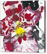 Flower Orchid 11 Elena Yakubovich Acrylic Print by Elena Yakubovich