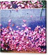 Flower Petals Saturated Ae Acrylic Print