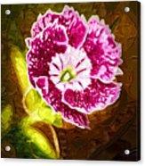Flower Pop 2 Acrylic Print