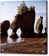 Flower Pot Rocks On The Beach, Hopewell Acrylic Print