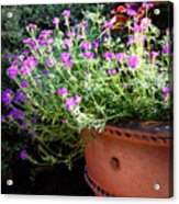 Flower Pot Acrylic Print