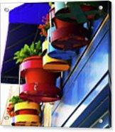Flower Pots Acrylic Print