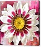 Flower Power Acrylic Print