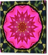 Flower Power Kaleidoscope Artifact Acrylic Print