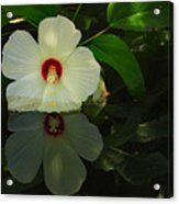 Flower Reflection Acrylic Print