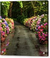 Flower Road Acrylic Print