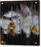 Flower Shop Window 2 Acrylic Print