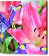 Flower Soft  Acrylic Print