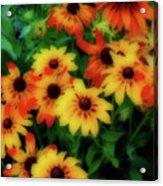 Flower Sunshine Acrylic Print