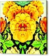 Flower Teddy Acrylic Print