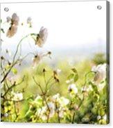 Flower Valley Acrylic Print