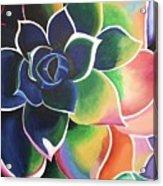 Flower Vibes Acrylic Print