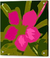 Flower Work Number 17 Acrylic Print