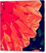 Flower5 Acrylic Print