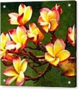 Flowerage Acrylic Print