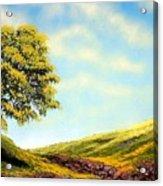 Flowered Fields Acrylic Print