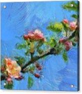 Flowering Apple Branch Acrylic Print