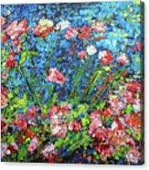 Flowering Shrub In Pink On Bright Blue 201676 Acrylic Print