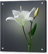 Flower..one Acrylic Print