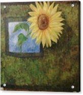 Flowerpower Acrylic Print