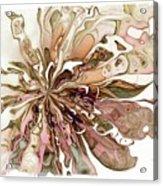 Flowers 004 Acrylic Print