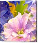 Flowers 42 Acrylic Print