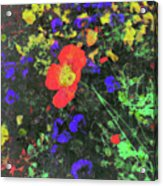 Flowers After Mass Acrylic Print