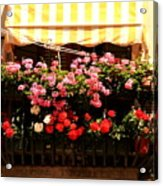Flowers And Awning In Venice Acrylic Print