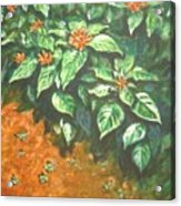 Flowers And Earth Acrylic Print