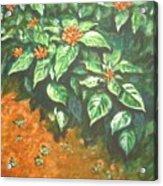 Flowers And Earth Acrylic Print