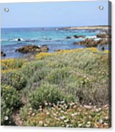 Flowers And Surf Acrylic Print