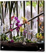 Flowers And Waterfall Acrylic Print