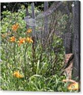Flowers At The Farm Acrylic Print