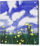Flowers Bright Field Acrylic Print