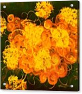 Flowers, Buttons And Ribbons -shades Of Orange/yellow  Acrylic Print