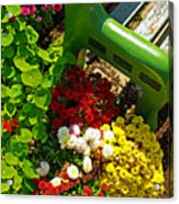Flowers By Green Bench Acrylic Print